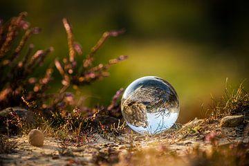 De glazen bol van Steffen Henze