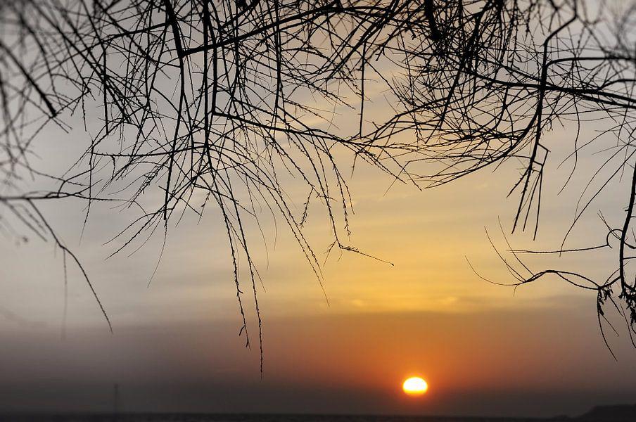 Coucher de soleil van Martine Affre Eisenlohr