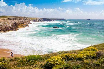Sommer an der Küste in der Bretagne, Frankreich von Evelien Oerlemans