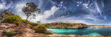 Originele baai op Mallorca van Fine Art Fotografie