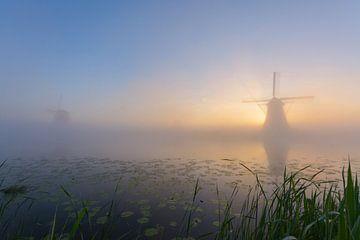 Kinderdijk op z'n mooist! van Remco Van Daalen