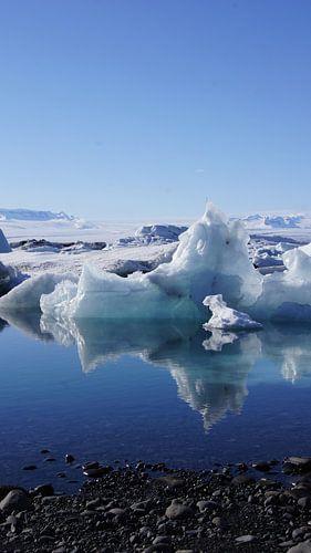 Icebear at Jökulsárlón ? von Aagje de Jong