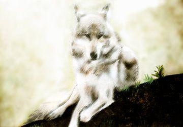 Malerische Arbeit eines weißen Wolfes (weißer Wolf) von Cor Heijnen