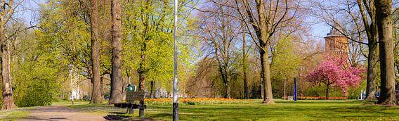 Breda - Panorama Wilhelminapark