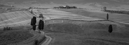 Monochrome Tuscany in 6x17 format, Agriturismo A Terrapille