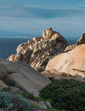 capo testa teresa di gallura , op het eiland sardinie van Compuinfoto .