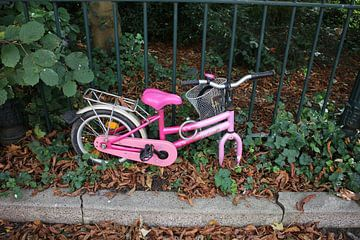 roze kinderfiets van Ard Edsjin