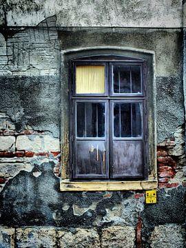 Fenster von Ilona Picha-Höberth