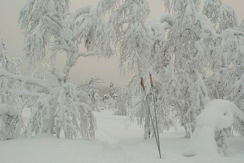 Stokken in de sneeuw