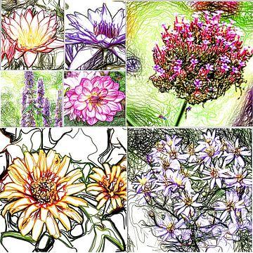 Blütenserenade von Karl-Heinz Lüpke