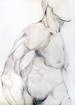 Tekening van de torso van een man. van Therese Brals