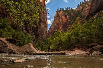 Zion National park Amerika van Robert Dibbits