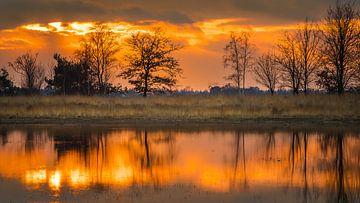 Zonsondergang op de Strabrechtse heide van Harold van den Hurk