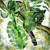 Jaguar - Der schwarze Jäger des Dschungels von Patricia Piotrak Miniaturansicht