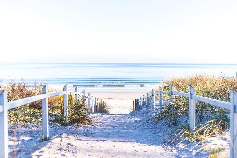 Ein Weg zum Strand von Florian Kunde