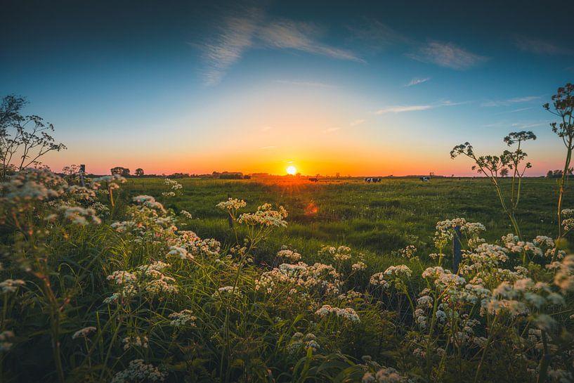 Walcheren zonsondergang 2 van Andy Troy