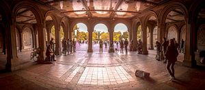 Central Park, New York - Panorama
