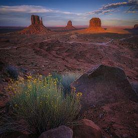 Het hart van Navajo gebied van Joris Pannemans - Loris Photography
