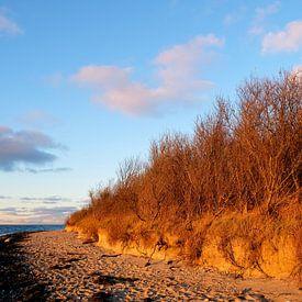 Ein schöner Winterabend von Ostsee Bilder