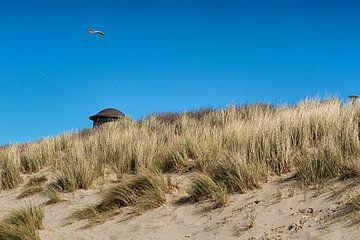 De zeeuwse kust von Alied Kreijkes-van De Belt