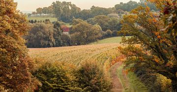 De herfst komt eraan in Zuid-Limburg van