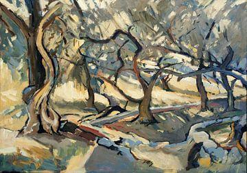 Olivenhain in Loggos von Nop Briex