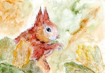 Eichhörnchen von Sandra Steinke