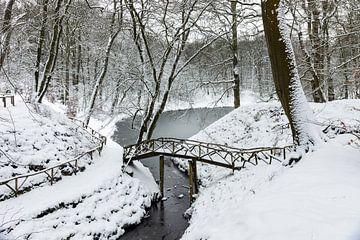 Winter op Landgoed Elswout sur Michel van Kooten