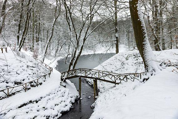 Winter op Landgoed Elswout