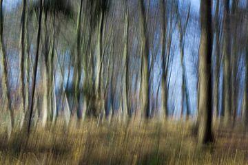 Bewogen bos  van Marieke de Boer