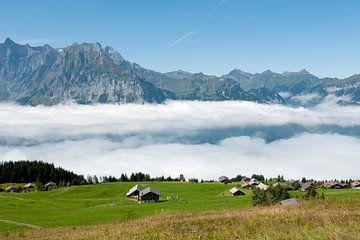 Landschaft im Sommer in der Schweiz von Ivonne Wierink