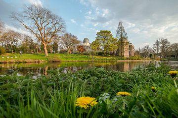 Laag perspectief met zicht op de Hortus Botanicus en Sterrenwacht  te Leiden van