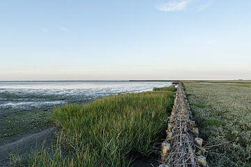 binnendijks - buitendijks foto 5 van Alex Boerema