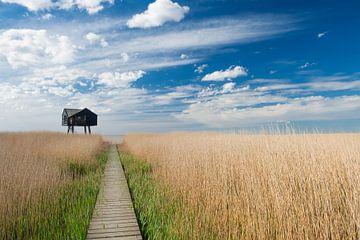 Vogelhaus als Markierung in der Groninger Landschaft von Margreet Piek