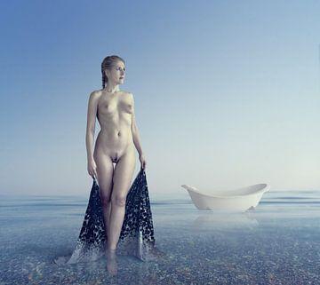 zeebad, Dmitry Laudin van 1x