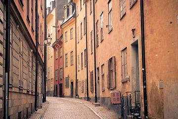 Straten van Stockholm van Sander van Leeuwen