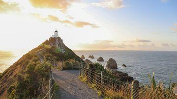 Le chemin vers le phare de Nugget Point - Nouvelle-Zélande sur Be More Outdoor