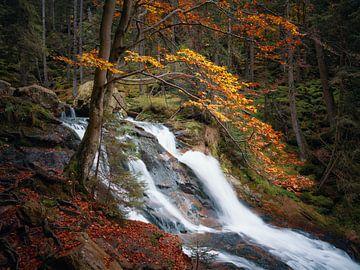La cascade de Riesloch en automne sur Max Schiefele