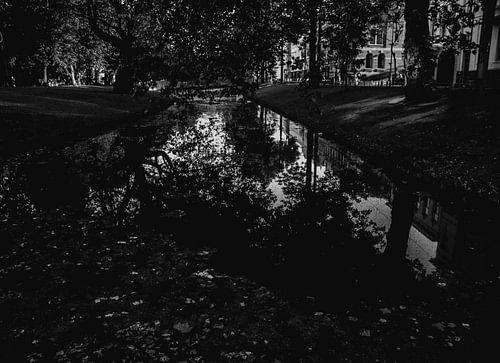 Reflectie in het water van