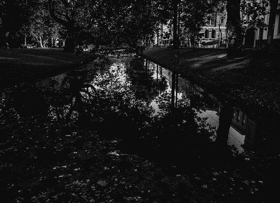 Reflectie in het water van Godelieve Luijk