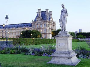 Louvre museum en Tuileries park
