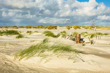 Landscape in the dunes of the North Sea island Amrum van Rico Ködder