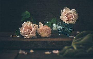 Drei Rosenblüten von Regina Steudte | photoGina