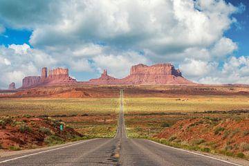 Highway to Monument Valley von Ilya Korzelius