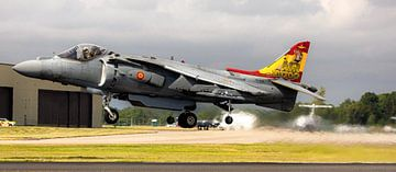 Spanish Navy AV-8B Harrier II Plus von Stefano Scoop