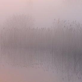 Lever de soleil pastel sur Sander van der Werf