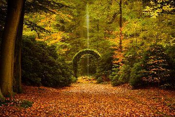 Het park bij kasteel De Wiersse van