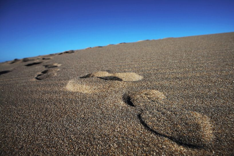 Empreintes dans le sable sur Frank Herrmann