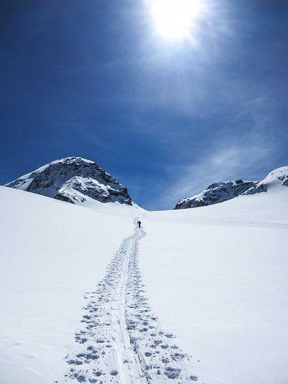 Skitour Schneeglocke van Johnny van der Leelie