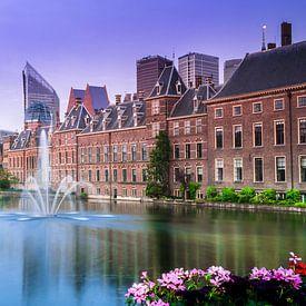 Den Haag - Hofvijver in de lente van Ricardo Bouman | Fotografie